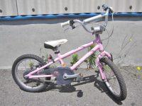 LOUIS GARNEAU ルイガノ LGS-J16 16インチ 子供用自転車