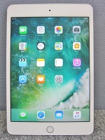 Apple iPad mini4 MK9H2J/A