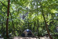 中古でも売れる「2ルームテント」は?キャンプ好きファミリー必見です