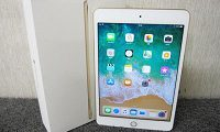 Apple iPad mini 4 128GB Wi-Fiモデル MK9Q2J/A Gold