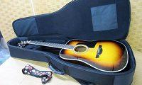 ジェームス アコースティックギター JD400